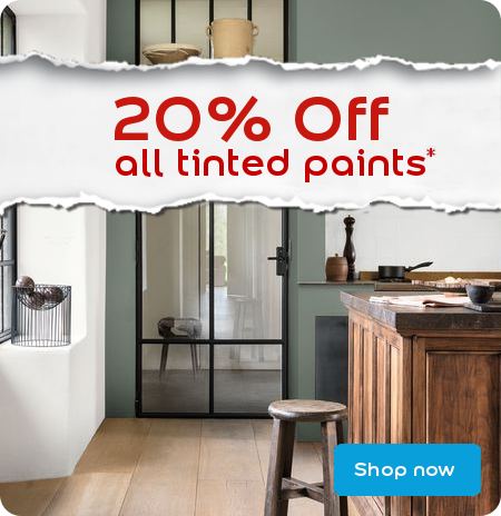 20% off all tinted paints