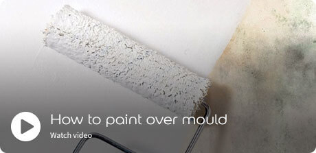 how to paint over mould