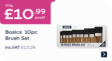 Only £10.99 Basics 10pc Brush Pack