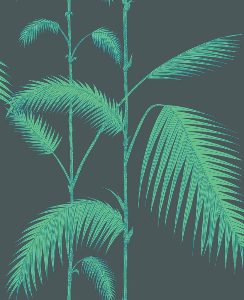 6344989_Cole =1= Son_Icons_Palm Leaves_112=16=2007.jpg