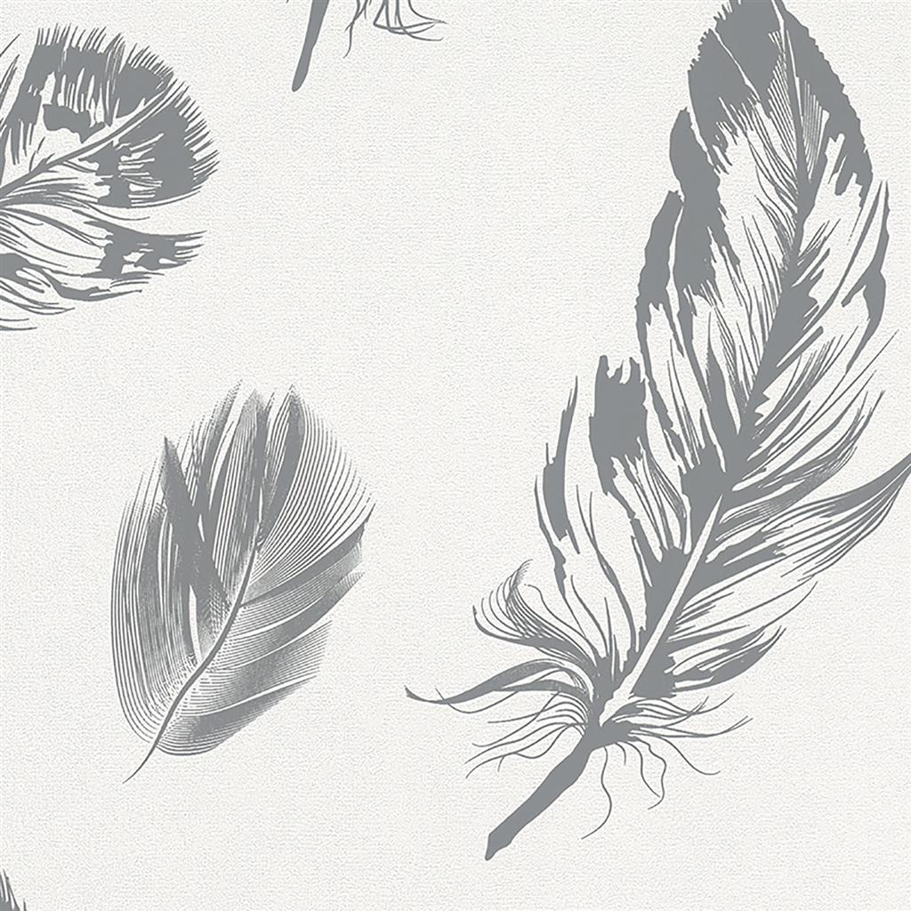 6403728_6767=16=40 =16= Imagine =16= Feather =16= Silver.jpg