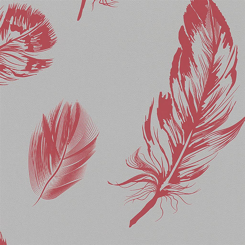 6403762_6767=16=30 =16= Imagine =16= Feather =16= Red.jpg