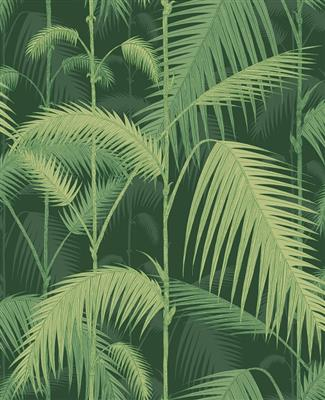 6344985_Cole =1= Son_Icons_Palm Jungle_112=16=1003.jpg